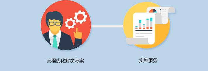 企业工艺流程优化解决方案与实施服务;